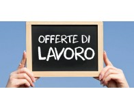 Cerchiamo un Wine Sales Manager
