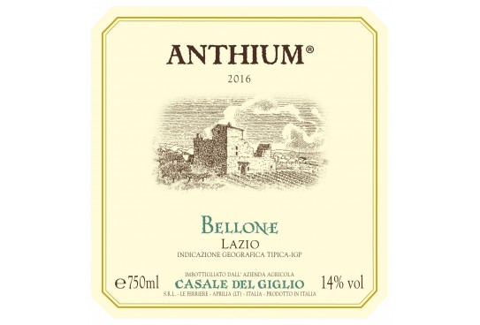 "Italian Wines in The World: ""Anthium"" Igt 2016"