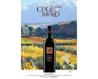 We have tasted for you Colle Moro's Alcàde Montepulciano d'Abruzzo DOC 2014