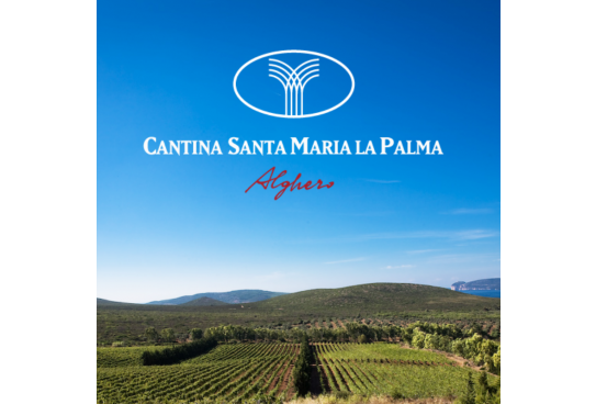 Italian wines in the world: Ràfia di Cantina Santa Maria La Palma