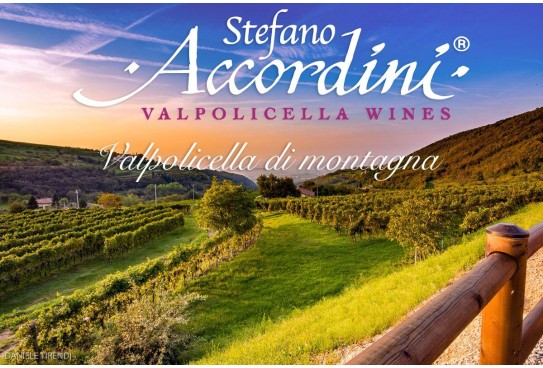 Italian wines in the world: Azienda Agricola Accordini Stefano's Valpolicella Classico Superiore Ripasso DOC