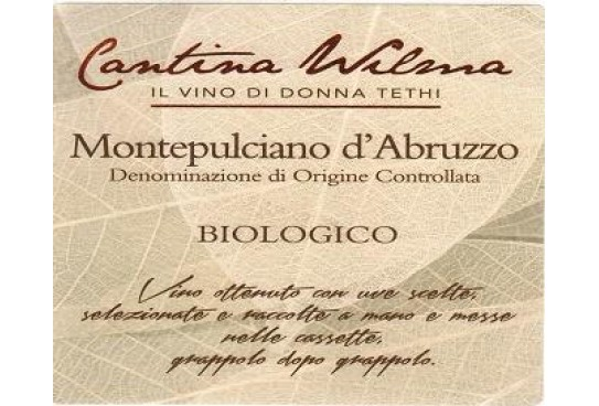 Italian wines in the world: Montepulciano d'Abruzzo DOC di Cantina Wilma Il Vino di Donna Thieti