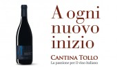 www.cantinatollo.it